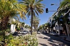 όψη ροντέο ρυθμιστή Los της Angeles Στοκ Εικόνες