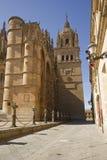 όψη Σαλαμάνκας Ισπανία κινηματογραφήσεων σε πρώτο πλάνο καθεδρικών ναών Στοκ Εικόνες
