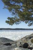 όψη της θάλασσας της Βαλτ& Στοκ φωτογραφία με δικαίωμα ελεύθερης χρήσης