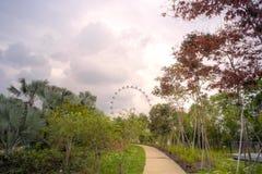 Όψη του ιπτάμενου Σινγκαπούρης Στοκ εικόνες με δικαίωμα ελεύθερης χρήσης