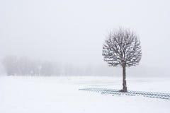 όψη χιονιού Στοκ εικόνες με δικαίωμα ελεύθερης χρήσης