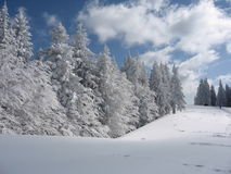 όψη 2 βουνών bucegi Στοκ φωτογραφία με δικαίωμα ελεύθερης χρήσης