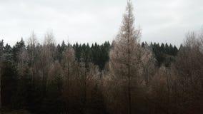 Όψη Στοκ εικόνα με δικαίωμα ελεύθερης χρήσης