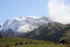όψη shogran βουνών Στοκ εικόνα με δικαίωμα ελεύθερης χρήσης