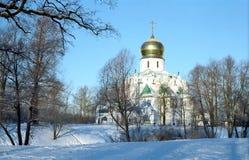 όψη theodor καθεδρικών ναών Στοκ Φωτογραφία