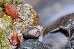 όψη zen Στοκ φωτογραφίες με δικαίωμα ελεύθερης χρήσης