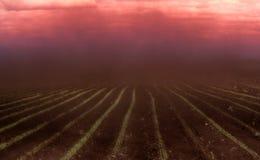 Όλα πνίγουν στο πυκνό ρεύμα της σκόνης Στοκ εικόνες με δικαίωμα ελεύθερης χρήσης