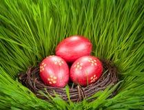 2 όλα τα αυγά Πάσχας έννοιας νεοσσών κάδων ανθίζουν τη χλόη χρωμάτισαν τις τοποθετημένες νεολαίες Αυγά σε μια φωλιά στη χλόη Στοκ Φωτογραφία