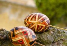 2 όλα τα αυγά Πάσχας έννοιας νεοσσών κάδων ανθίζουν τη χλόη χρωμάτισαν τις τοποθετημένες νεολαίες Ζωηρόχρωμα αυγά Πάσχας στο φλοι Στοκ φωτογραφία με δικαίωμα ελεύθερης χρήσης