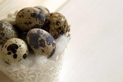 2 όλα τα αυγά Πάσχας έννοιας νεοσσών κάδων ανθίζουν τη χλόη χρωμάτισαν τις τοποθετημένες νεολαίες Στοκ Εικόνα