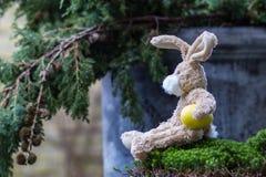 2 όλα τα αυγά Πάσχας έννοιας νεοσσών κάδων ανθίζουν τη χλόη χρωμάτισαν τις τοποθετημένες νεολαίες Αστείο teddy κουνέλι με ένα κίτ Στοκ Φωτογραφία
