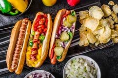 Όλα τα σκυλιά βόειου κρέατος, variantion των χοτ-ντογκ Στοκ φωτογραφία με δικαίωμα ελεύθερης χρήσης