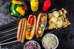 Όλα τα σκυλιά βόειου κρέατος, variantion των χοτ-ντογκ Στοκ Εικόνα