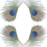 3 όλη η αλλαγή ανασκόπησης χρωματίζει το εύκολο πρότυπο στρωμάτων Στοκ φωτογραφία με δικαίωμα ελεύθερης χρήσης