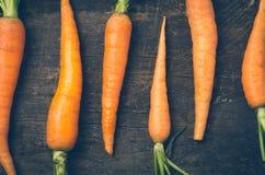 Όλος-φυσικά καρότα που παρατάσσονται στον ξύλινο πίνακα Στοκ φωτογραφίες με δικαίωμα ελεύθερης χρήσης