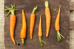 Όλος-φυσικά καρότα που παρατάσσονται στον ξύλινο πίνακα Στοκ εικόνες με δικαίωμα ελεύθερης χρήσης