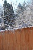 όλο το οποιοδήποτε μεμονωμένο χιόνι μεγέθους κλίμακας αντικειμένων απεικόνισης στοιχείων στο διάνυσμα δέντρων Στοκ Εικόνα