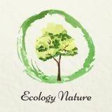 όλο το eco σχεδίου ομαδοποίησε το διάνυσμα στρωμάτων απεικόνισης Διανυσματικό θέμα οικολογίας Πρότυπο για το πράσινο προϊόν Στοκ Εικόνες