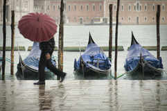 ύδατα της Βενετίας Στοκ εικόνα με δικαίωμα ελεύθερης χρήσης