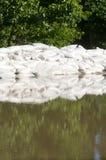 ύδωρ άμμου πλημμυρών τσαντών στοκ εικόνες με δικαίωμα ελεύθερης χρήσης