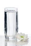 ύδωρ γυαλιού λουλουδ&i Στοκ Εικόνα