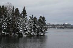 ύδωρ δέντρων Στοκ φωτογραφίες με δικαίωμα ελεύθερης χρήσης