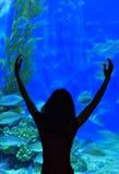 ύδωρ ζωής Στοκ εικόνες με δικαίωμα ελεύθερης χρήσης