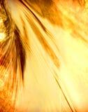 ύδωρ ηλιοβασιλέματος Στοκ Φωτογραφία
