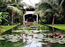 ύδωρ κήπων στοκ εικόνα