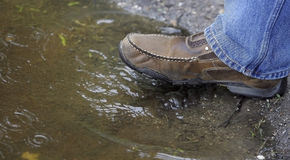 ύδωρ λιμνών ποδιών Στοκ Φωτογραφία