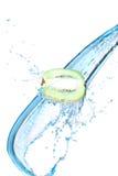 ύδωρ παφλασμών ακτινίδιων στοκ φωτογραφία