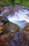 ύδωρ ροής Στοκ Εικόνες