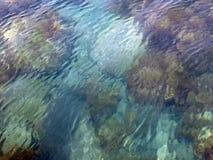 ύδωρ σύστασης Στοκ Εικόνες