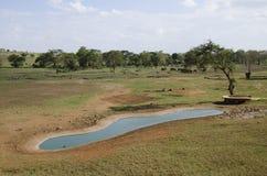 ύδωρ της Αφρικής Στοκ φωτογραφίες με δικαίωμα ελεύθερης χρήσης