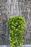 ύδωρ τοίχων ρευμάτων τούβλ&om Στοκ φωτογραφίες με δικαίωμα ελεύθερης χρήσης