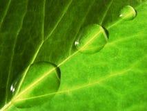 ύδωρ φύσης στοκ φωτογραφία με δικαίωμα ελεύθερης χρήσης