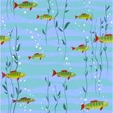 ύδωρ ψαριών ανασκόπησης Στοκ Εικόνες