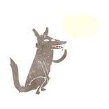 λύκος κινούμενων σχεδίων που γλείφει το πόδι με τη λεκτική φυσαλίδα Στοκ φωτογραφίες με δικαίωμα ελεύθερης χρήσης