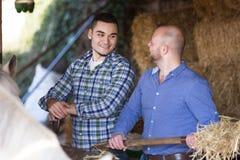Δύο αγρότες που ταΐζουν τα άλογα Στοκ Φωτογραφίες