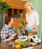 Δύο γυναίκες που παρασκευάζουν το βοτανικό τσάι Στοκ εικόνες με δικαίωμα ελεύθερης χρήσης