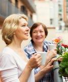 Δύο γυναίκες seniore που πίνουν το τσάι Στοκ εικόνες με δικαίωμα ελεύθερης χρήσης