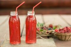 Δύο μπουκάλια μαγειρευμένων των κρύο φρούτων από τα ανάμεικτα μούρα Στοκ Εικόνα
