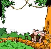 δύο πίθηκοι Στοκ φωτογραφίες με δικαίωμα ελεύθερης χρήσης