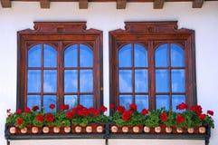Δύο παράθυρα και λουλούδια Στοκ Φωτογραφίες