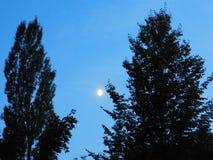 Ύπνοι η νύχτα Στοκ φωτογραφία με δικαίωμα ελεύθερης χρήσης
