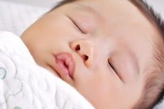 ύπνος προσώπου 3 μωρών Στοκ Εικόνα