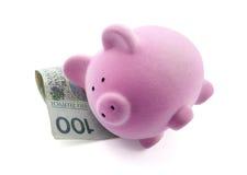 Ύπνος τραπεζών Piggy στα τραπεζογραμμάτια στιλβωτικής ουσίας. Στοκ Φωτογραφία