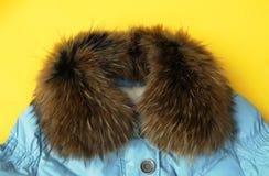 Ύφασμα μόδας με το περιλαίμιο γουνών στοκ εικόνες