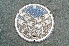 Ύφος αγωγών ΚΑΠ Ιαπωνία στη διάβαση πεζών στο Himeji, Ιαπωνία Στοκ εικόνες με δικαίωμα ελεύθερης χρήσης