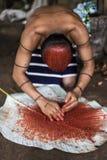 Ύφος τρίχας Achiote της ινδικής φυλής ατόμων Los Tsachila, Ισημερινός Στοκ Εικόνες
